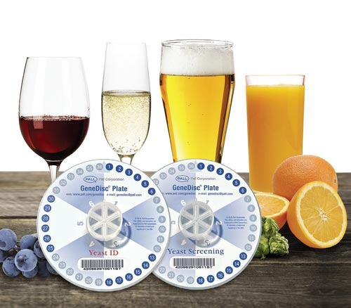 Craft Breweries - GeneDisc® Technologies - Yeast Detection and Identification product photo