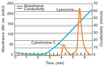 Acrodisc Unit with Mustang S Membrane: Resolution with Cytochrome C and Lysozyme
